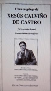 CalviñodeCastro01